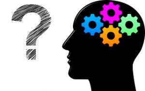 Read more about the article Peut-on parler d'intelligence?