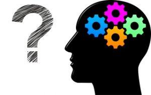 Peut-on parler d'intelligence?
