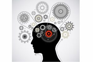 Read more about the article Neurosciences & apprentissages